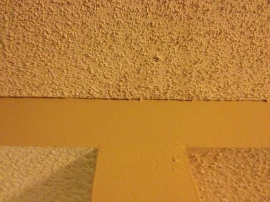 Dana Point Marina Inn: mold on ceiling
