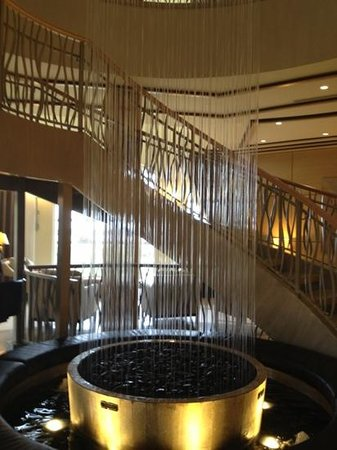 Water Feature In Lobby Picture Of The Westin Cape Coral