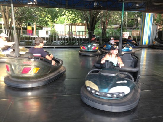Wild Adventures Theme Park: Bumper cars