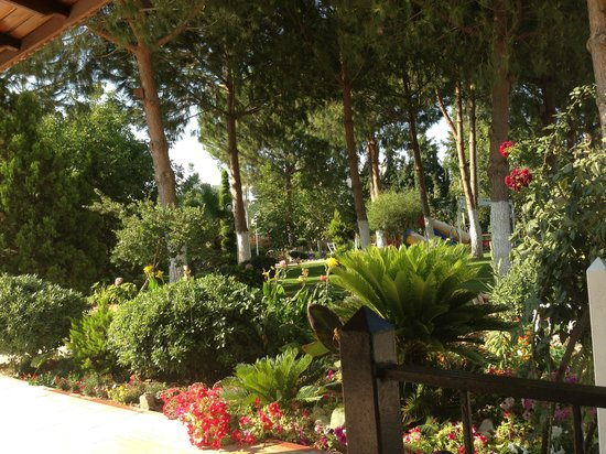 Opus Apart Hotel: Garden area