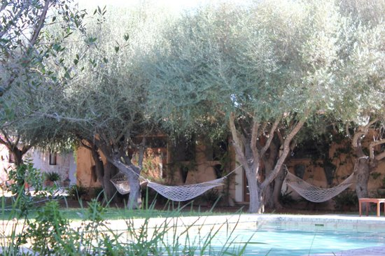 Petit Hotel Es Figueral: Hammocks close to the pool