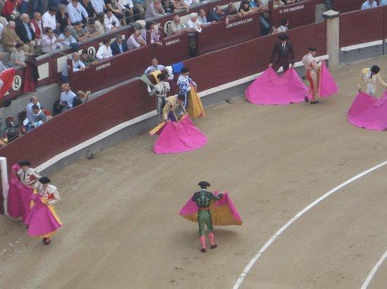 Plaza de Toros las Ventas: I CORAGGIOSISSIMI TORERI