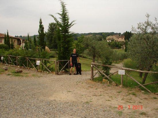 Tenuta Sant'Ilario: the estate