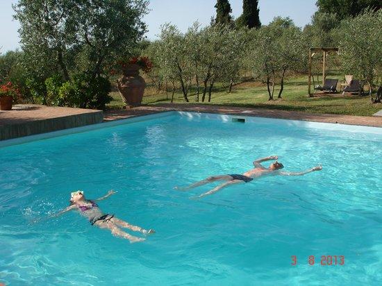 Tenuta Sant'Ilario: pool