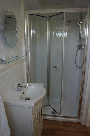 Red Lion: En suite Bathroom
