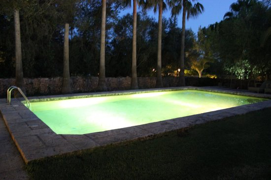 Petit Hotel Es Figueral: pool at night