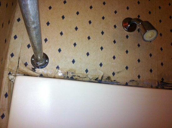 Budget Host Virginia: Shower taped up to hide mold