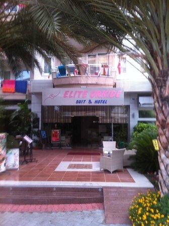 Elite Orkide Suite & Hotel: Hotel