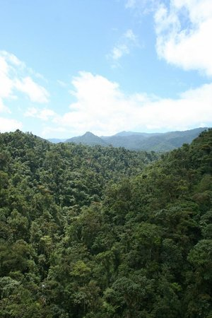 El Monte Sustainable Lodge: A short walk away