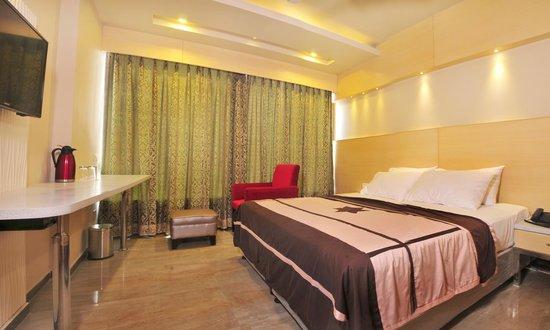Hotel Krishna Plaza New Delhi: Executive room