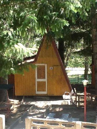 Hotel dei Pini: baita nel camping Lorica :)