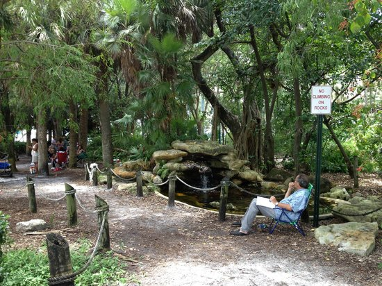 Riverwalk Fort Lauderdale: In the park like atmosphere,peaceful and serene.