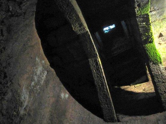 Pozzo Etrusco : gurdando in su