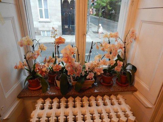 Manoir de L'Esplanade : Flowers just inside the front door to the hotel