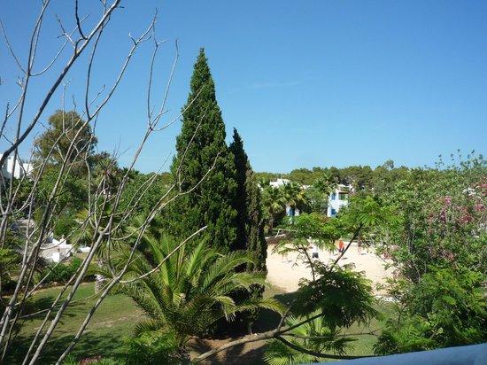 Cala Llenya Resort Ibiza: view from front door