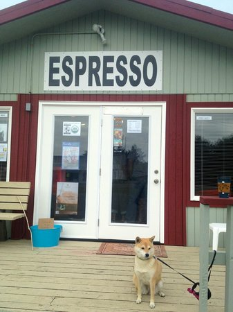 Shilo Inn Suites - Ocean Shores: Coffee House next to hotel