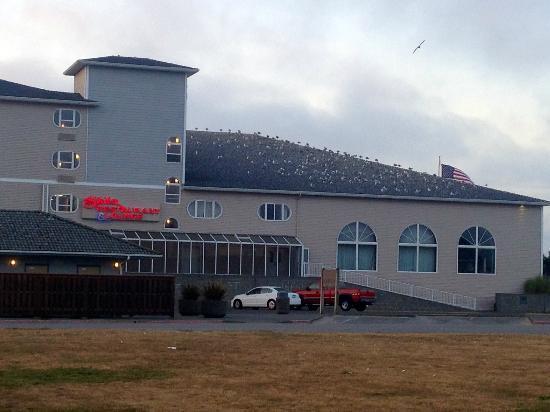 Shilo Inn Suites - Ocean Shores: view of hotel