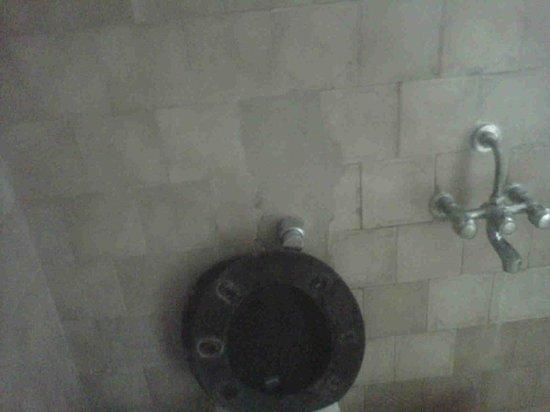 Pratap Plaza Hotel: toilet condtion pathetic..