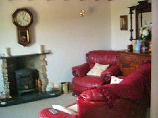 Llety Ffynnon Ddu: Living Room