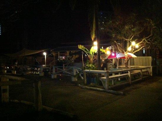 Swingin' Safari: at the front night view