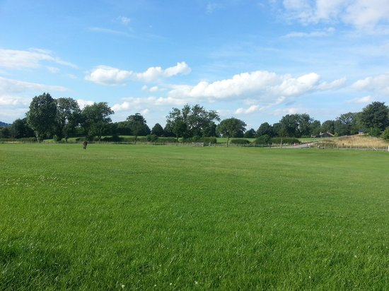 Thornton Hall Farm Country Park: View from the camping field