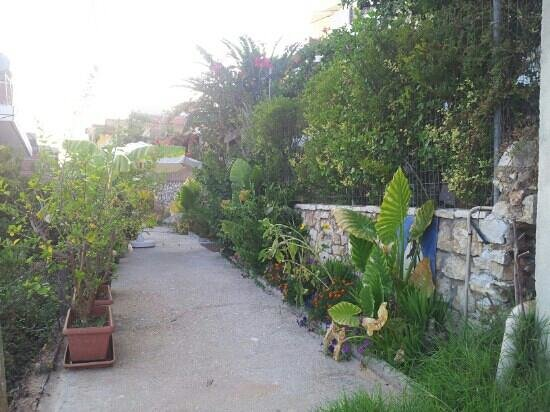 Ionian View Hotel: the entrance of ionian view