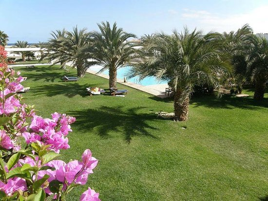 Hotel Dunas de Sal: Garden and Swimming pool