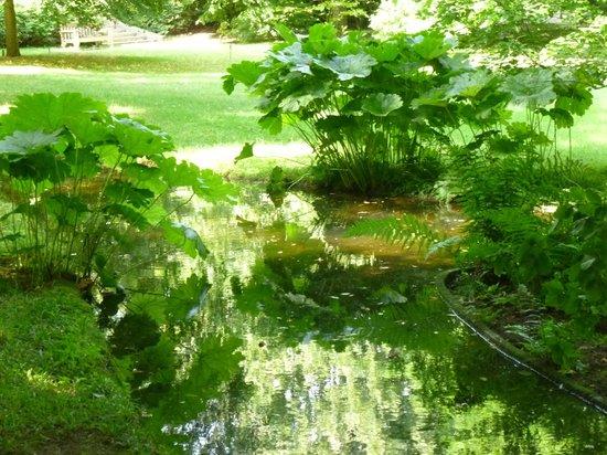 pond - Picture of Albert Kahn Musee et Jardins, Boulogne ...