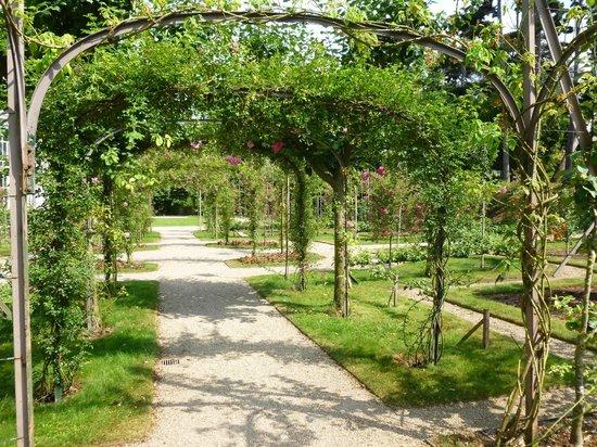 Jardin japonnais photo de albert kahn musee et jardins boulogne billancourt tripadvisor - Jardin d eveil boulogne billancourt ...