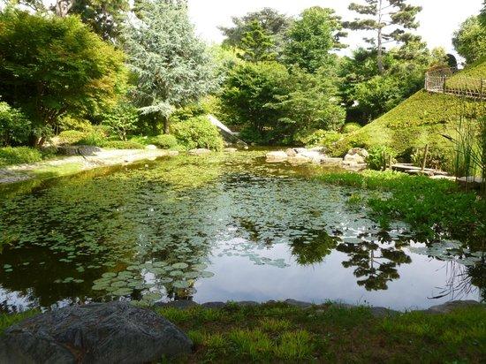 Pond picture of albert kahn musee et jardins boulogne billancourt tripadvisor - Jardin d eveil boulogne billancourt ...