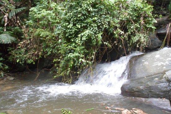 Palawan Mangrove Resort : little falls