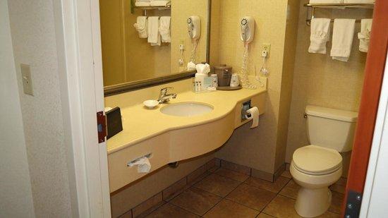 Hampton Inn Suites Valdosta Conference Center: sink