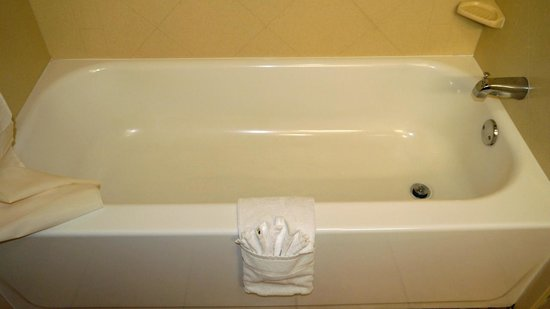 Hampton Inn Suites Valdosta Conference Center: tub