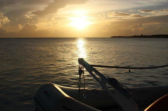 Tango Caribbean Dinner Cruise: Spectacular