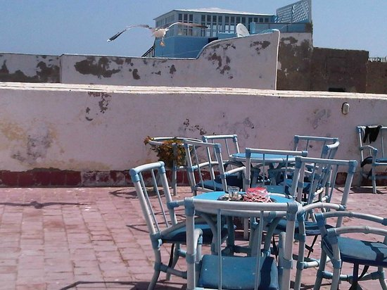 Hotel Smara: Terrasse petit dej le goelan repart avec le reste de beurre