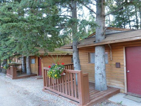 Pocahontas Cabins: Older cabins
