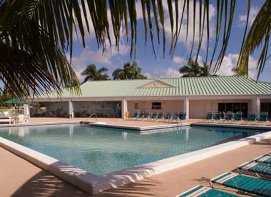 Gold Coaster RV Resort: Swimming Pool