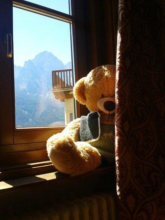 Silence & Schlosshotel Mirabell: L'orso