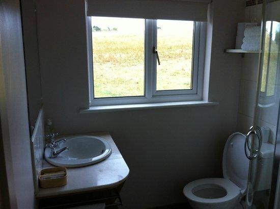 Ferrycarrig Lodge B&B: Bathroom