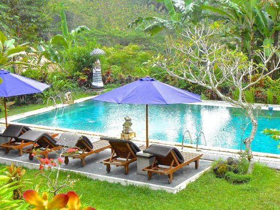 Subak Tabola Villa: The pool at Tabola