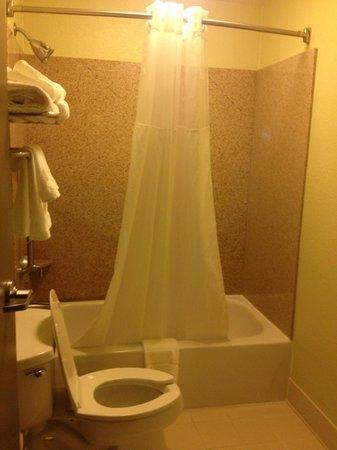 SpringHill Suites Shreveport-Bossier City/Louisiana Downs: Bathroom
