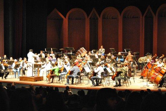 Teatro Guaira : Orquestra Sinfônica do Paraná - Apresentação de temas infantis
