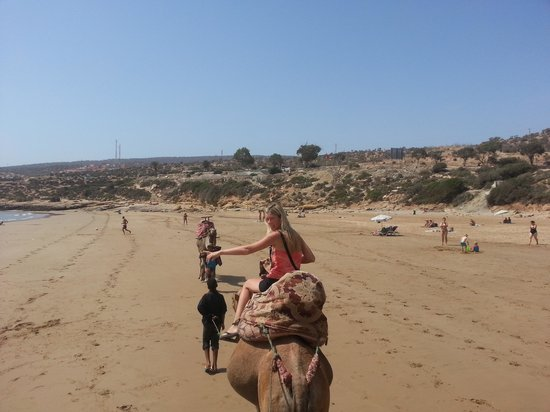 Taghazout Beach: Camel Riding