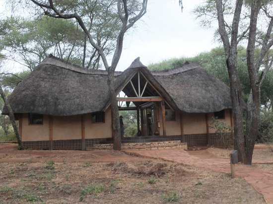 Sanctuary Swala: Swala