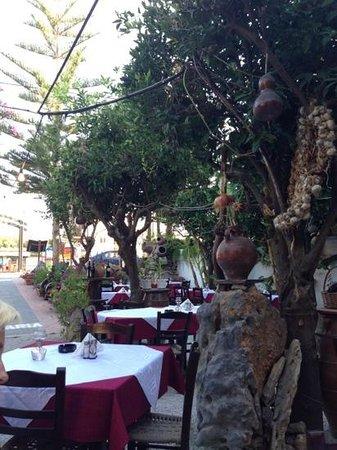 Arokaria - Restaurant - Cafe: fint utseende, men kun det!
