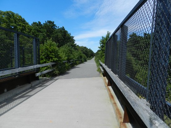 Cape Cod Rail Trail: Bridge crossing a highway