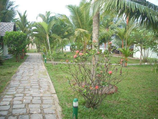 Emarald Pristine Island Floating Resort : garden view