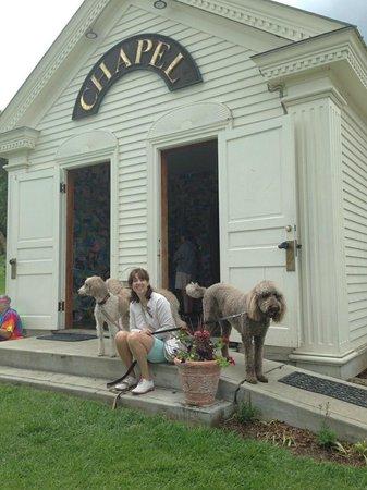 Dog Mountain: Chapel