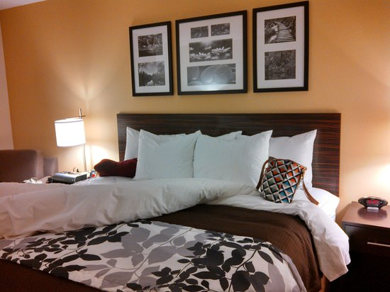 Sleep Inn & Suites Medical Center: our room