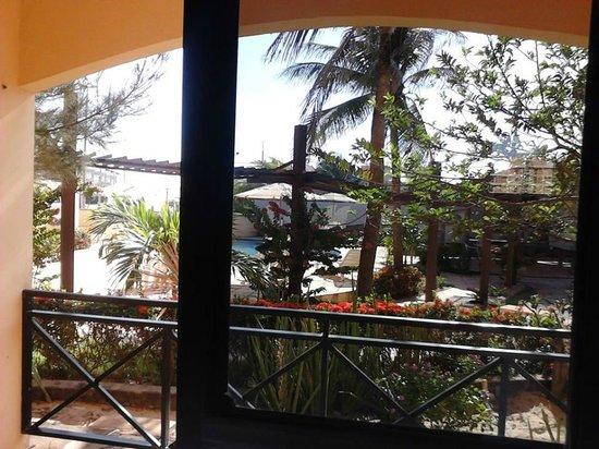 Kalamari Hotel: Jardim.